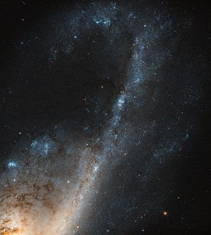 NGC 4536 - Image: Starbursts in Virgo