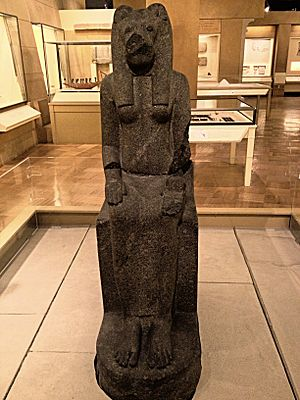 Statue of Sekhmet - The Statue of Sekhmet at the Royal Ontario Museum in Galleries of Africa: Egypt.