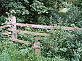 Stile leading to Little Horton Wood - geograph.org.uk - 455025.jpg