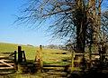 Stile near the Giant's Ring, Belfast - geograph.org.uk - 1743411.jpg