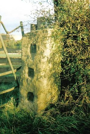 Gatepost -  Square concavities to receive the horizontal crossbars