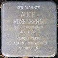 Stolpersteine Köln, Alice Rosenberg (Marienburger Straße 52).jpg