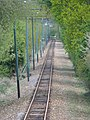 Straight section of the Seaton tramway - geograph.org.uk - 1285038.jpg