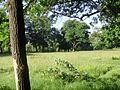Strigino 2 - panoramio.jpg
