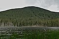 Summit lake, Clearwater Wilderness, WA.jpg