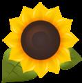 Sunflower FM Logo.png