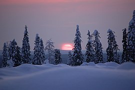 Sunset in Kainuu, Finland.jpg
