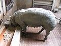 Sus scrofa domesticus - Piétrain pig - Hamburg, Tierpark Hagenbeck - 2.jpg