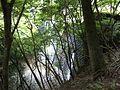 Susugaya, Kiyokawa, Aiko District, Kanagawa Prefecture 243-0112, Japan - panoramio - SYM50cc EMR (3).jpg