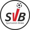 Svbrake logo 100.png