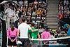 Sydney International Tennis ATP 250 (46190657174).jpg