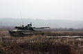 T-80U (8).jpg