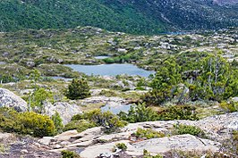 Tarn Shelf Mt Field National Park 3.jpg