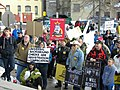 Tea Party Pro Gun Rally (8500574787).jpg