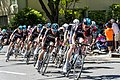 Team Sky leads the field on the final laps of Stage 1 in Sacramento (34154677554).jpg