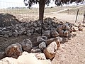 Tel Shimron - Archaeological excevation of the site of the first settelment of Nahalal (6).jpg