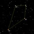 Terebellum asterism.png