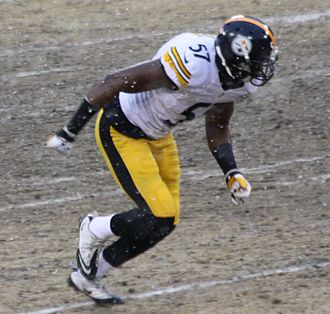 Terence Garvin - Garvin with the Pittsburgh Steelers in 2013