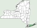 Tetragonia tetragonioides NY-dist-map.png