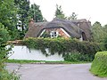 Thatched cottage, Binley - geograph.org.uk - 883843.jpg