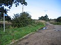 The Black Fen Waterway Trail, Wentworth, Cambs - geograph.org.uk - 227329.jpg