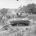The British Army in Italy 1944 NA15684.jpg