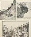The Cuba review (1907-1931) (20804343875).jpg