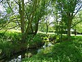 The Emm Brook - geograph.org.uk - 855753.jpg