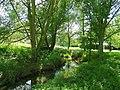 The Emm Brook - geograph.org.uk - 855753.jpg