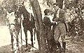 The Jilt (1922) - 1.jpg