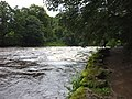 The Lune in flood at Kirkby Lonsdale - geograph.org.uk - 2061319.jpg