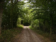 The Mortimer Trail near Lucton - geograph.org.uk - 219819.jpg