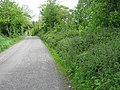 The road at Anglont - geograph.org.uk - 1316758.jpg