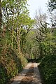 The road down to Lowleybridge - geograph.org.uk - 421062.jpg