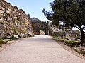 The road to the Lion Gate of Mycenae on 26 March 2019.jpg