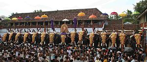 Pooram - Caparisoned elephants during Sree Poornathrayesa temple festival, Thrippunithura.