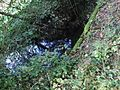 Tomašnica - Potok kod Kamenika - panoramio (1).jpg