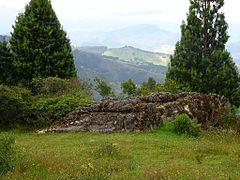 Tortolitas - Páramo de Ocetá - Mongui - Colombia.jpg