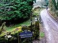 Track to Babeny Farm - geograph.org.uk - 1065798.jpg