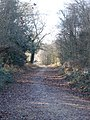 Track to North Plumley Farm - geograph.org.uk - 291611.jpg