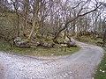 Trackway junction near Chapel-Le-Dale - geograph.org.uk - 1241176.jpg