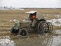 Tractor en el Delta del Ebro.jpg