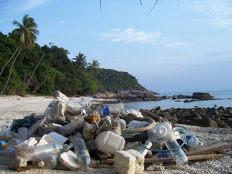 File:Trash problem on Perhentian Kecil beach.JPG