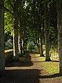 Tree-lined Path by the Varnhem Monastery Ruins.jpg