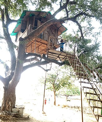 Tree house - Tree house built with steps