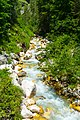 Triglav National Park 4239 (48329321632).jpg