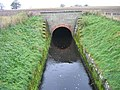 Tunnel watercourse near Thornham Farm - geograph.org.uk - 1035803.jpg