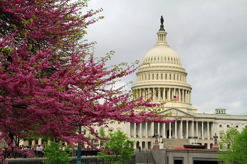 File:USA Washington Capitol.JPG