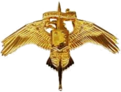 US Marine Corps Special Operator Insignia.png
