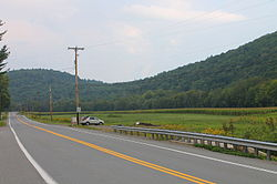 U.S. Route 220 in Shrewsbury Township